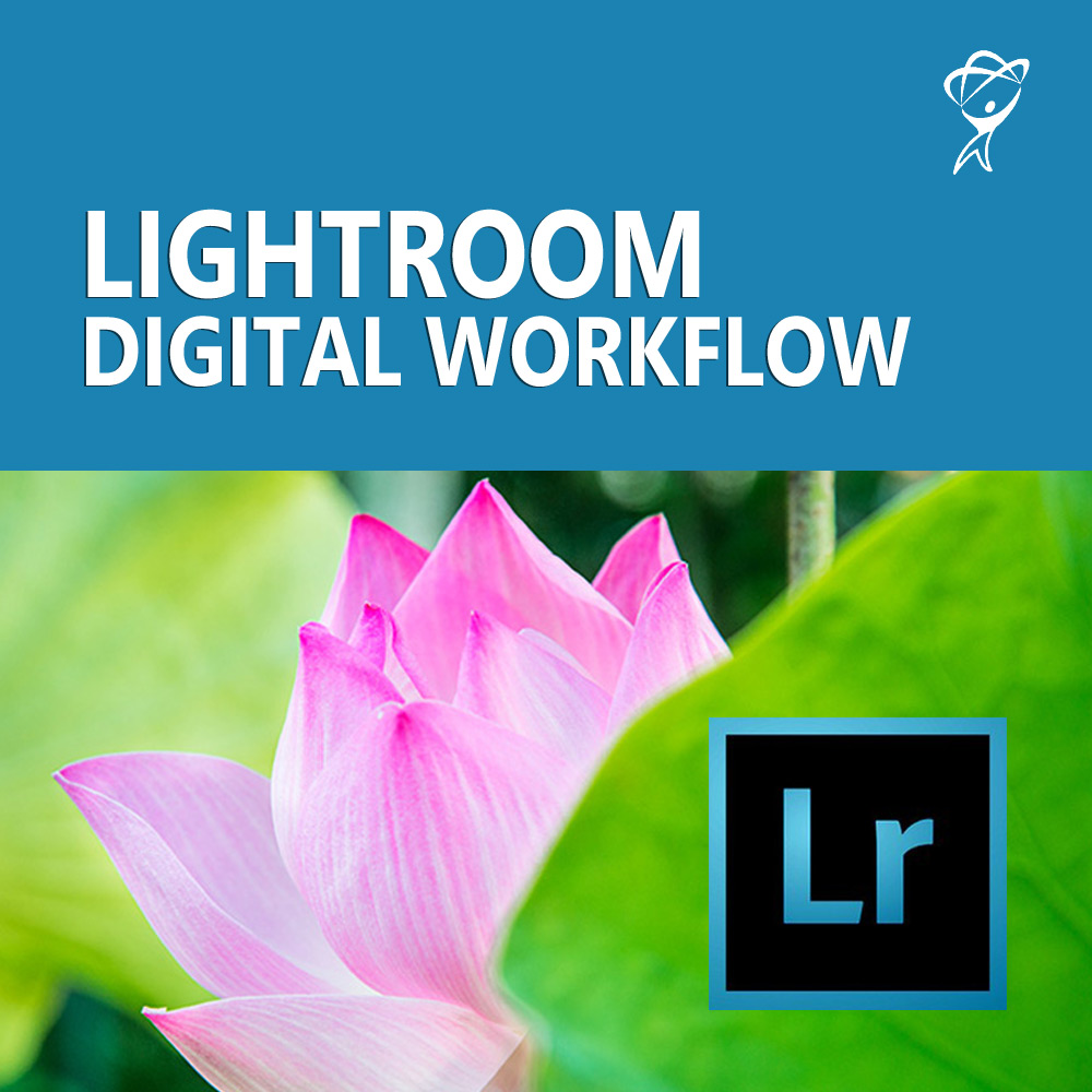 Lightroom Digital Workflow course from Total Training